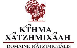 DOMAIN CHATZIMICHALIS
