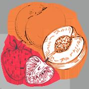aromatisch-fruchtig