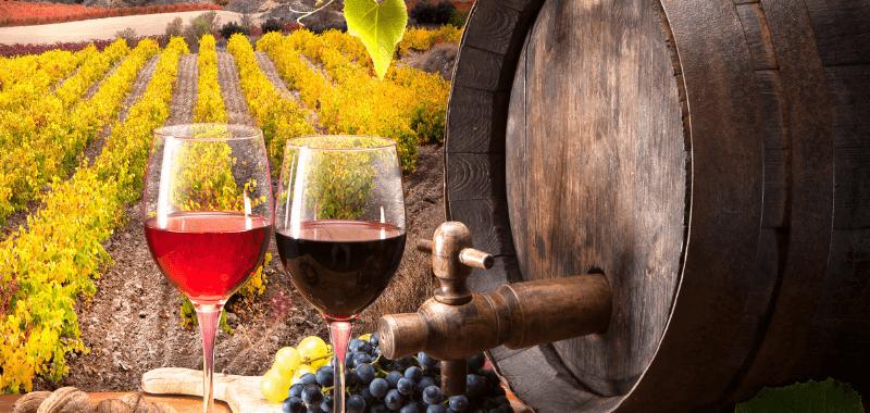 Araxxon wines